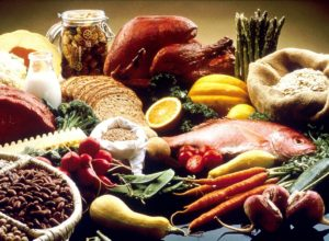 Protein and Fiber Rich Diet