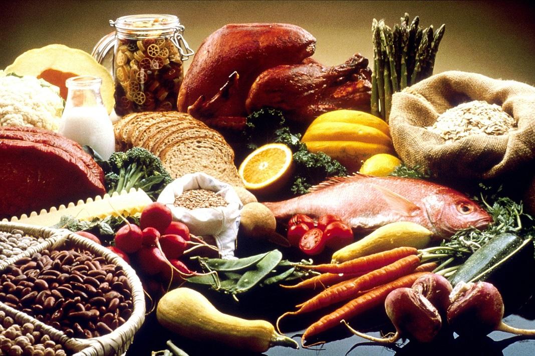 Protein and Fiber Rich Diet