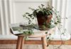 6 Easy Home Decor Ideas For Busy Moms