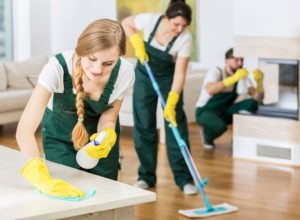 Professionals window cleaning services