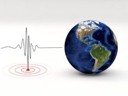 Reduction in Seismic Noise Due To COVID-19