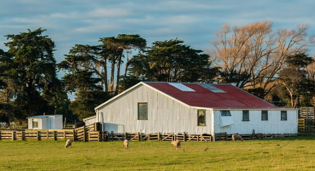 Farm Shed (1)